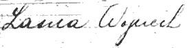 Wojciech Lasica's name entered in the Zeeland's manifest list.